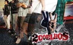Poster/Capa do filme 2 Coelhos